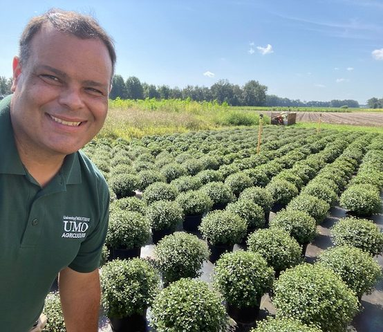 UMO to Hold Fall Plant Sale
